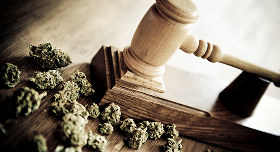 Marijuana Laws & Disability Discrimination: What Employers Need to Know